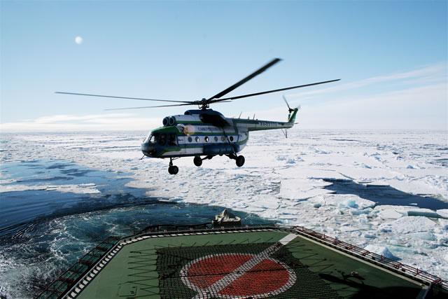 antarcticheli